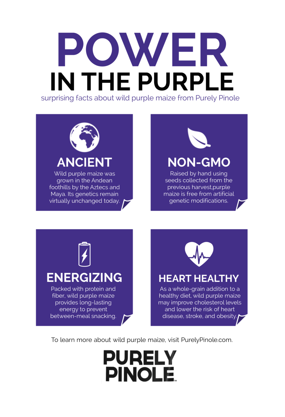 Power in the Purple Infographic RECREATED 102.fw